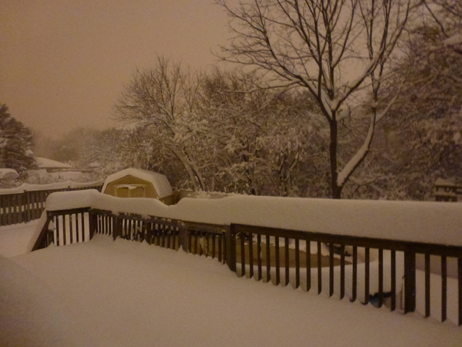 Big snow fall Nov 24th 6:00 am London, Ontario Canada
