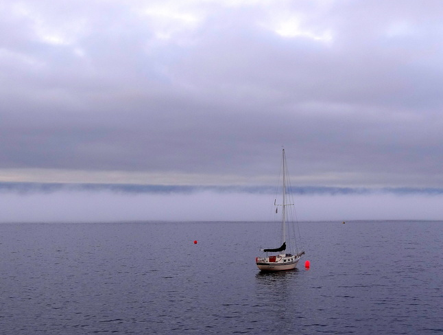 Fog drifts behind the anchored boats Comox, British Columbia Canada