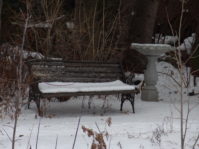 WAITING FOR SPRING Gimli, Manitoba Canada