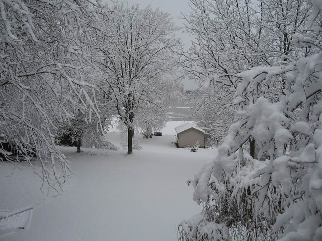 First Beautiful Snow Fall Belleville, Ontario Canada