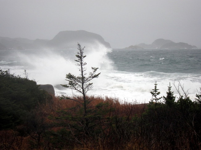 After the storm Burgeo, Newfoundland and Labrador Canada
