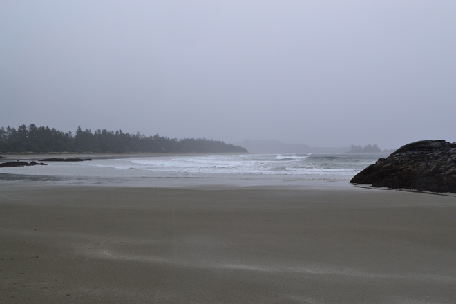Misty Beachside Tofino, British Columbia Canada