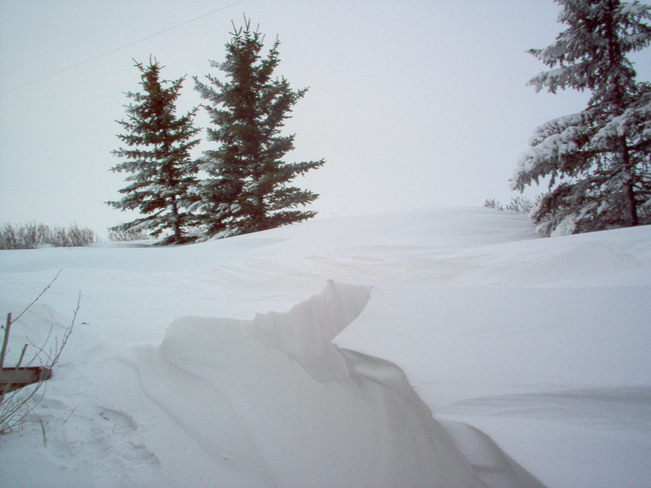 Aftermath of the blizzard Beiseker, Alberta Canada