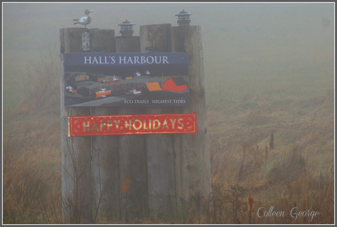 Hall's Harbour Foggy Greeting Centreville, Nova Scotia Canada