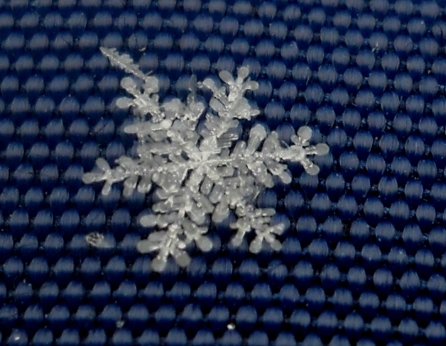 Snowflake Peterborough, Ontario Canada