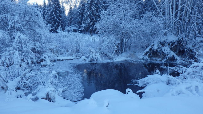 winter pond Salmo, British Columbia Canada
