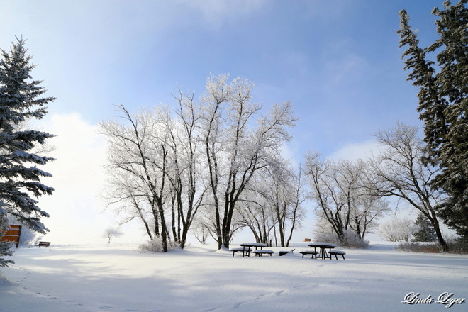 A Winter Canvas Oakbank, Manitoba Canada