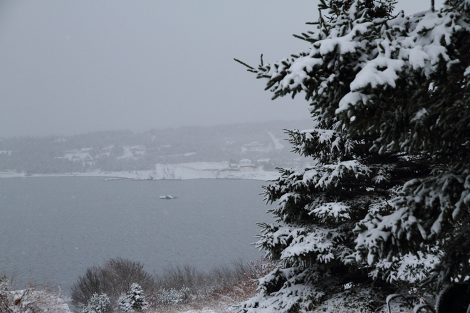 Transition from snow to rain Bay Roberts, Newfoundland and Labrador Canada