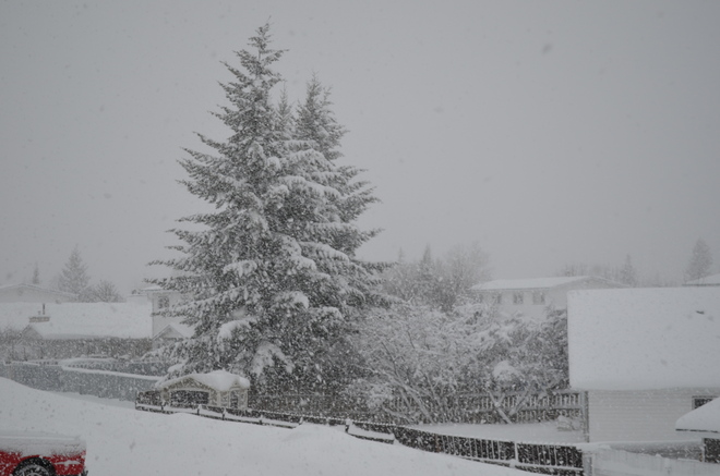 Not Officially Winter !!! Prince George, British Columbia Canada