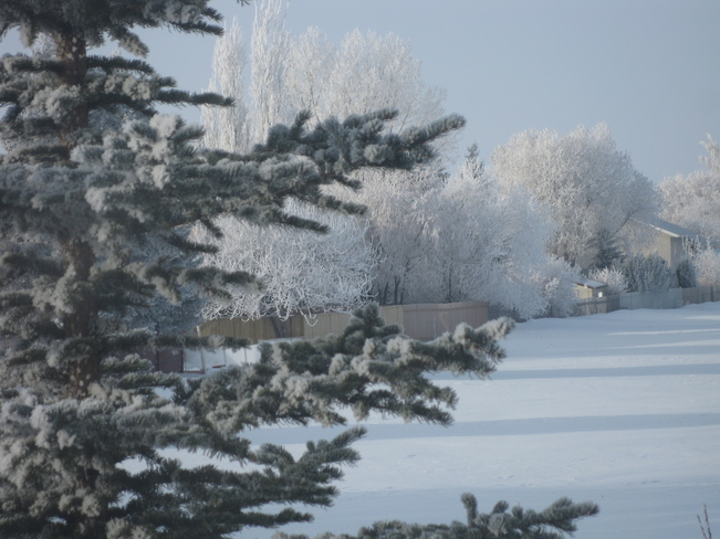 Frosty Friday the 13th Claresholm, Alberta Canada