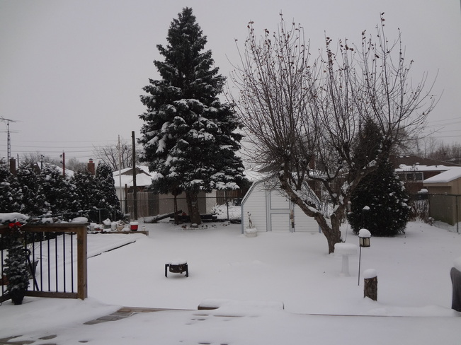 Beautiful snowy day Thorold, Ontario Canada