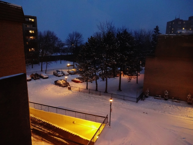 Beautiful winter view from my room Mississauga, Ontario Canada