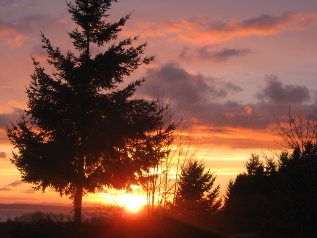 setting sun Surrey, British Columbia Canada