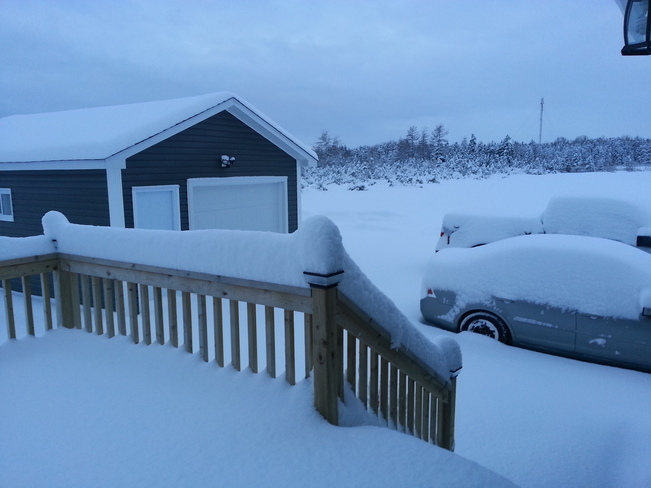 Lots of Fluffy Snow Botwood, Newfoundland and Labrador Canada