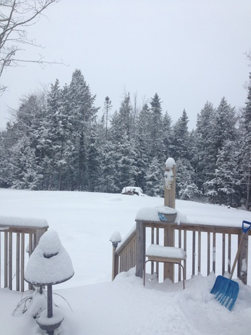 winter wonderland Elmsdale, Nova Scotia Canada