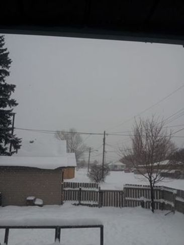 Another snowy morning in the nieghborhood Sault Ste. Marie, Ontario Canada