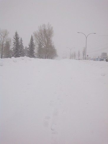 To much Snow Calgary, Alberta Canada