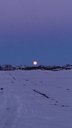 moonrise Wainwright No. 61, Alberta Canada