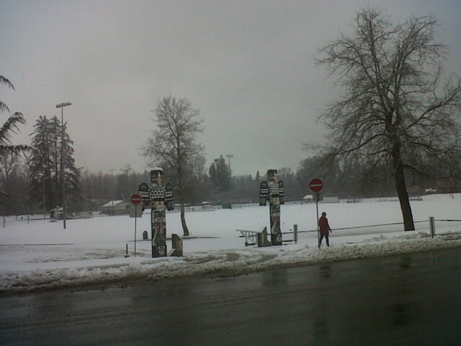 Lewis park in the snow.