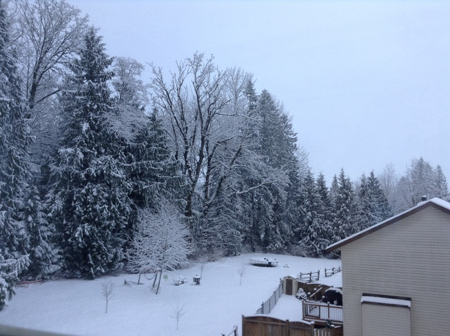 winter has came early Chilliwack, British Columbia Canada