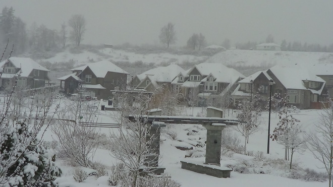 Veil of Snow covers Abbotsford Abbotsford, British Columbia Canada