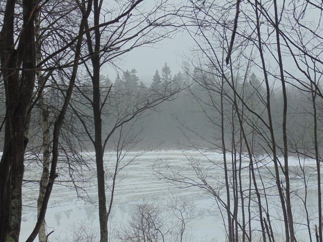 Foggy Lake Dartmouth, Nova Scotia Canada