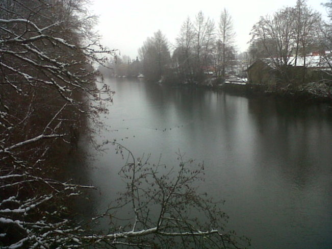 Snowy Courtenay River.