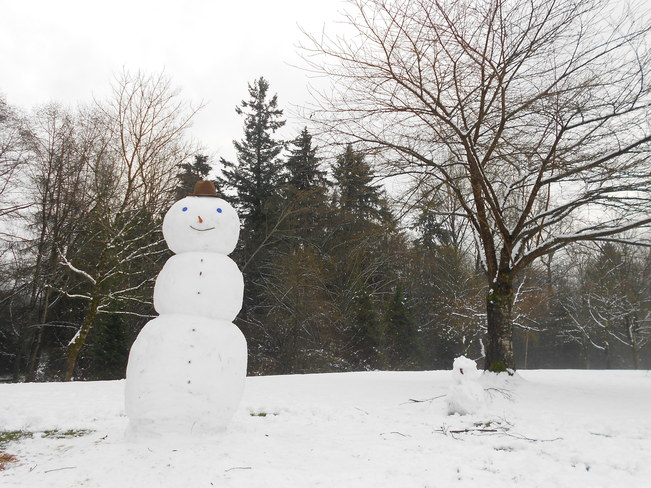 Snow Man Surrey, British Columbia Canada