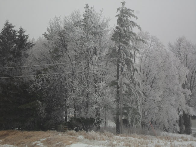 Ice Storm in Wisconsin USA Elliot Lake, Ontario Canada