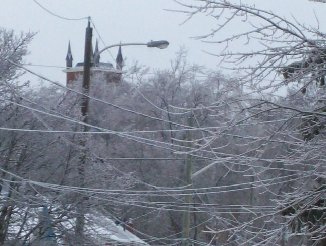 The Aftermath of the Icestorm of Dcemeber 2013 Belleville, Ontario Canada