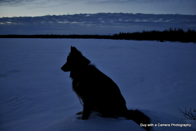 SALLY AT SUNRISE Grand Falls-Windsor, Newfoundland and Labrador Canada