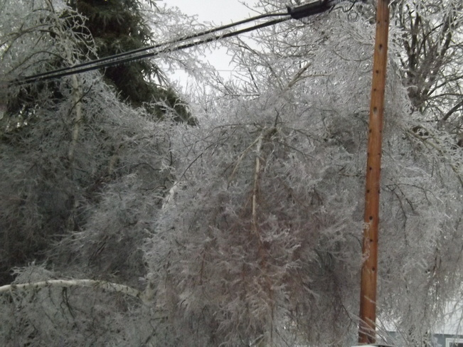 ice storm the final chapter 3 New Minas, Nova Scotia Canada