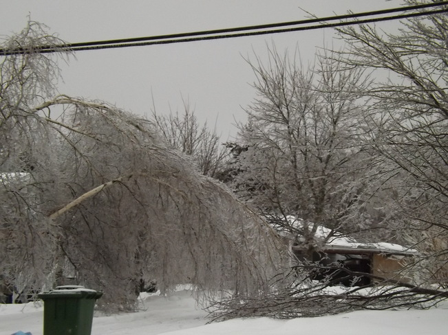 ice storm the final chapter 7 New Minas, Nova Scotia Canada