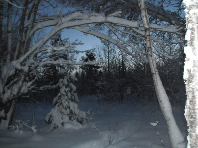 evening snowshoe scenery Miramichi, New Brunswick Canada