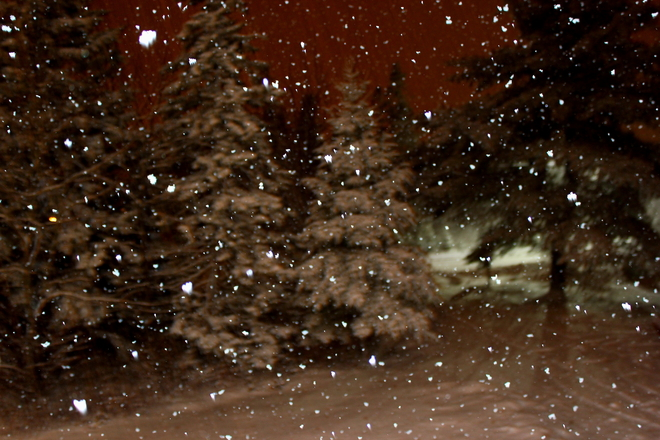Boxing Night Snow Upper Tantallon, Nova Scotia Canada