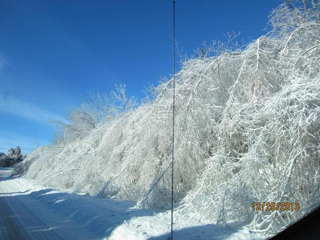 ice storm Potton, Quebec Canada