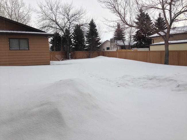 my backyard this morning Calgary, Alberta Canada
