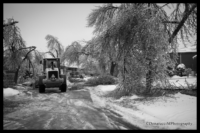 Clean Up Brampton, Ontario Canada