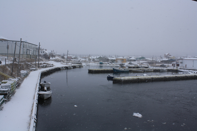 Winter in the harbour! Bonavista, Newfoundland and Labrador Canada