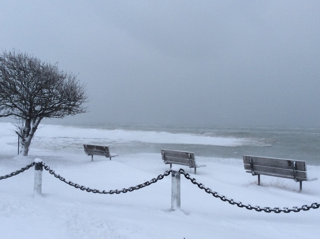 Anyone for a swim? Goderich, Ontario Canada