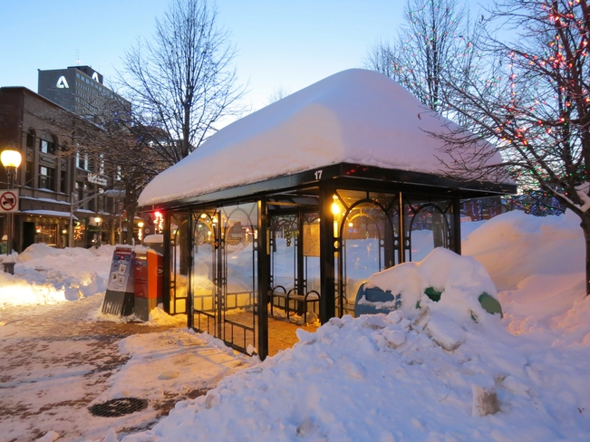Bus Shelter in downtown Moncton Moncton, New Brunswick Canada