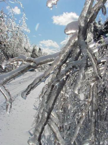 Ice Storm in New Brunswick St. George, New Brunswick Canada