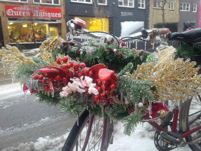 Frozen Winter bike basket