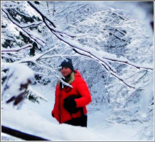 Walking In A Cold Icy winter wonderland Canning, Nova Scotia Canada