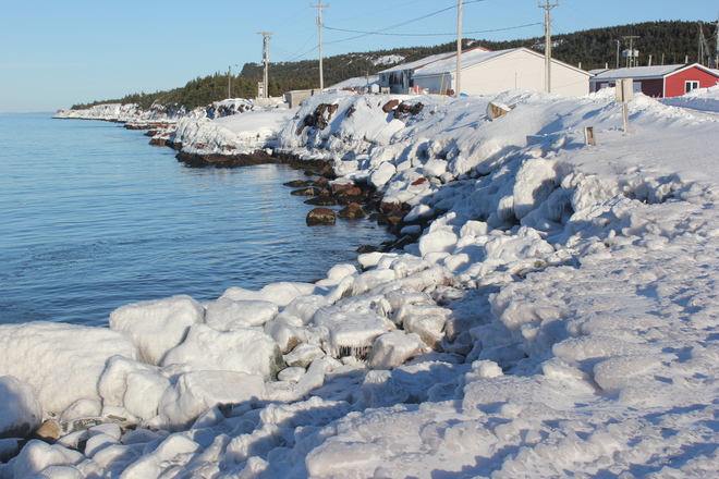 a winter's day Norman's Cove-Long Cove, Newfoundland and Labrador Canada