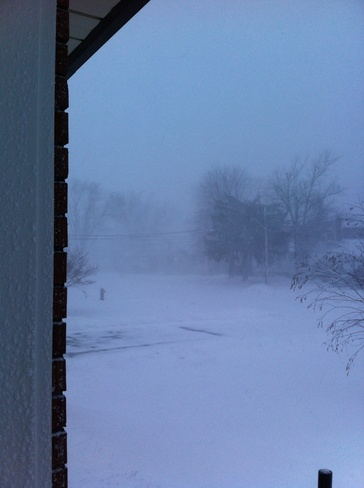 Rediculous snow storm! Welland, Ontario Canada