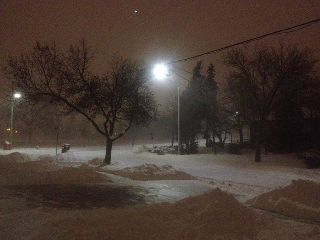 heavy snow gusts Mississauga, Ontario Canada