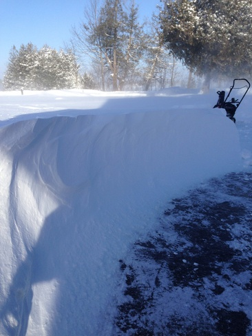 wind making snow drifts 3' deep Woodville, Ontario Canada