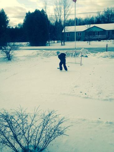 Mother Nature Rink Tamworth, Ontario Canada