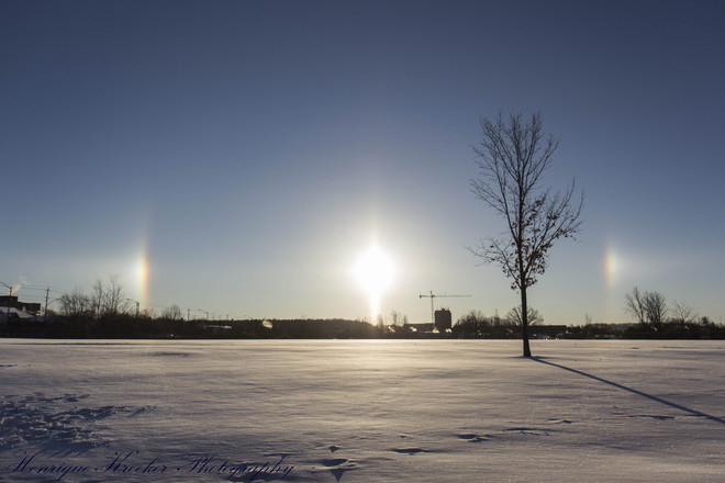 SunDogs Kitchener, Ontario Canada